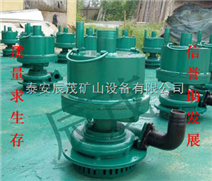 供應山東煤礦用FQW10-60/W排污泵-行業L先
